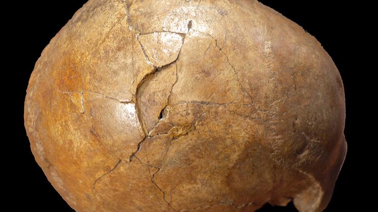 Zabójca użył pałki, prawdopodobnie był mańkutem. Zbrodnia sprzed... 33 tys. lat