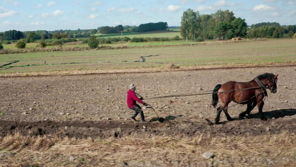 Rolnicy - Odcinek 39